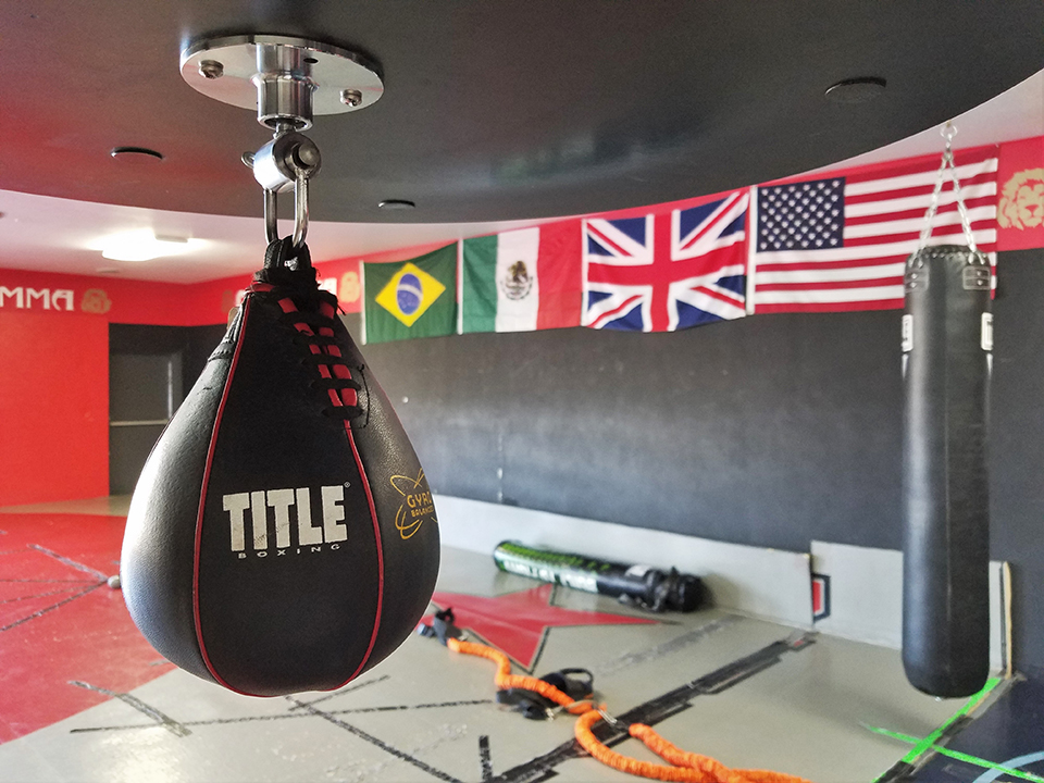 OneHit MMA authentic MMA training center